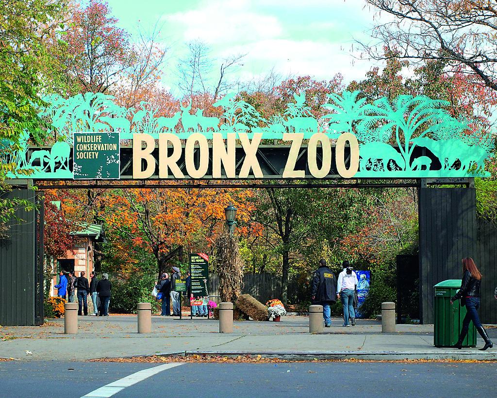 Bronx Zoo: Una experiencia  divertida y salvaje