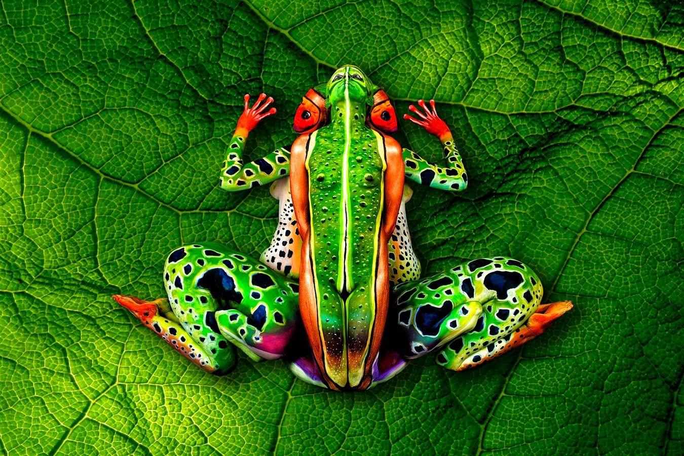 Imágenes ópticas con cuerpos humanos