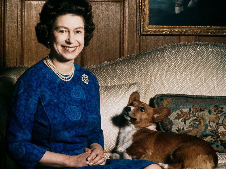 mascotas de la familia real